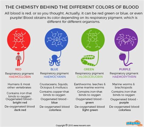 different colors of blood what colour is blood mocomi
