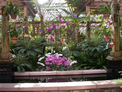 what time does the botanical gardens orchid house in the atlanta botanical gardens picture