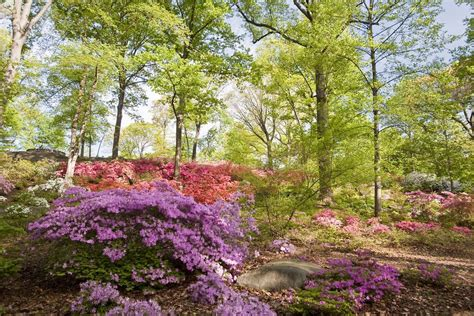 best botanical garden winners 2016 10best readers choice