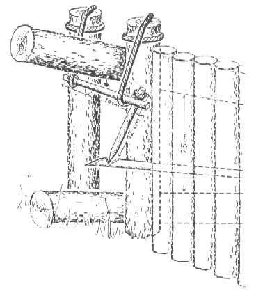 come costruire una gabbia trappola per uccelli la caccia