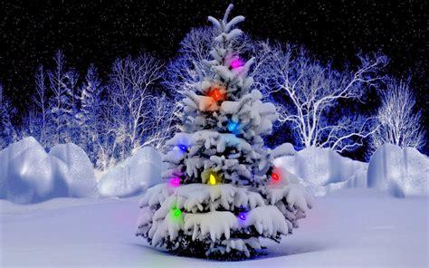 imagenes navidad invierno banco de im 193 genes 30 im 225 genes de escenarios navide 241 os en