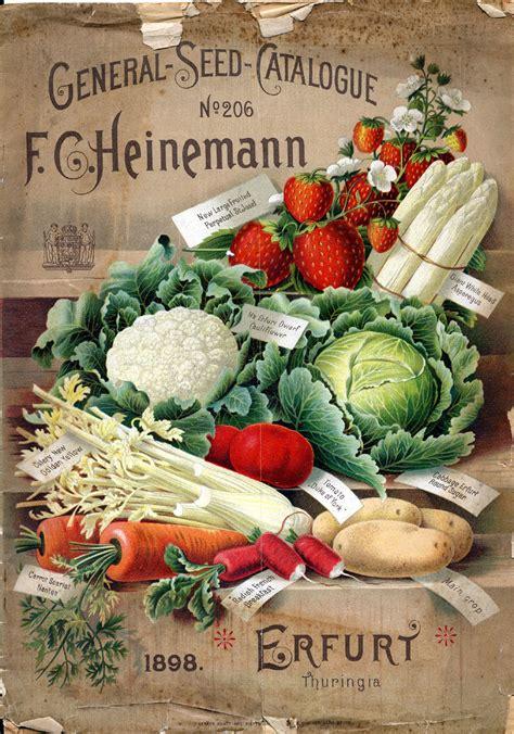 vegetable garden catalogs seed types seed terminology nana s garden gate