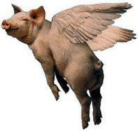 pigs might fly when pigs fly the meaning and origin