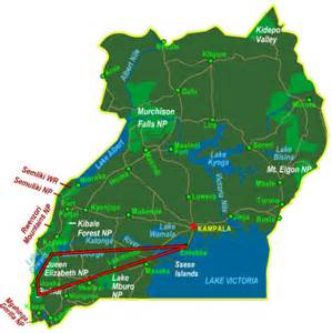 Kazinga tours and safaris uganda rwanda tanzania bwindi