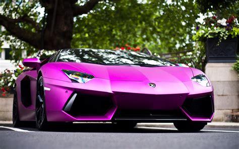 car lamborghini pink lamborghini cars