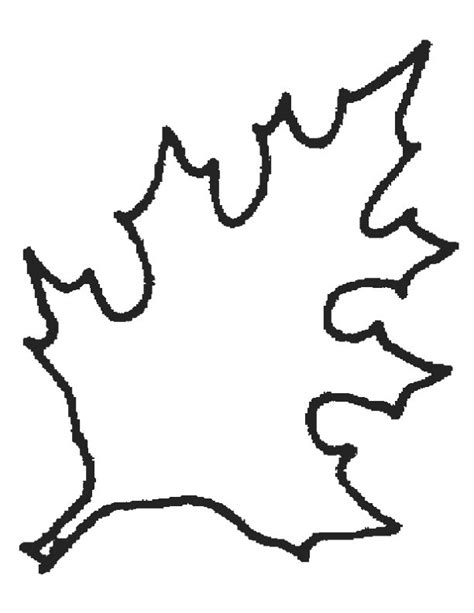 leaf coloring pages for preschool untitled document www everythingpreschool com