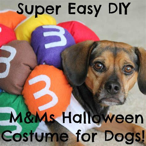 diy mini m ms halloween costume for dogs