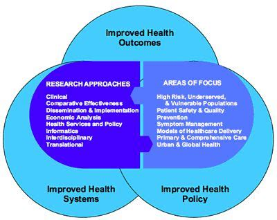 synergy model nursing theory 88 best images about research shmesearch on pinterest