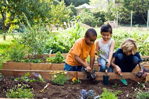 Gardening With Toddlers Gardening With San Luis Obispo Landscaping