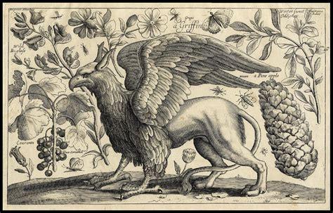 animal mitologico grifo mapa el animal mitol 243 gico grifo legendary creature griffin