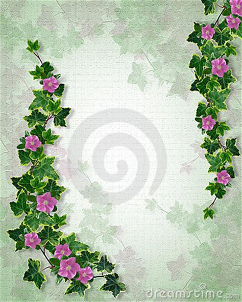 wedding invitation ivy floral border royalty  stock