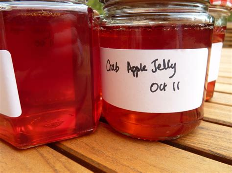 apple jelly crabapple jelly the ordinary cook