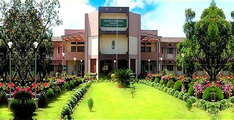 Government For Mba Graduates In Kerala by Kerala Agricultural College Of Agriculture