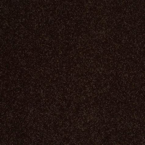 Home Decorators Collection Chicago by Dark Brown Carpet Texture Carpet Vidalondon