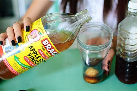 does vinegar kill bed bugs white vinegar to get rid of fruit flies home remedies for