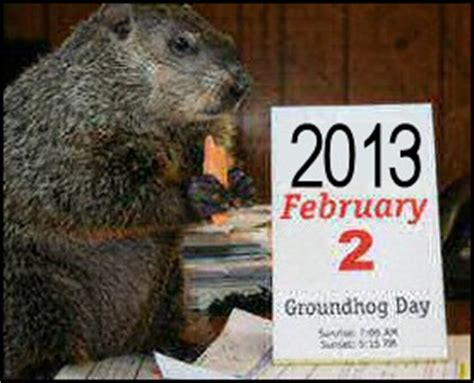 groundhog day jokes pictures groundhog jokes and quotes quotesgram