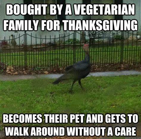 Funny Thanksgiving Memes - bought by a vegetarian family for thanksgiving funny meme