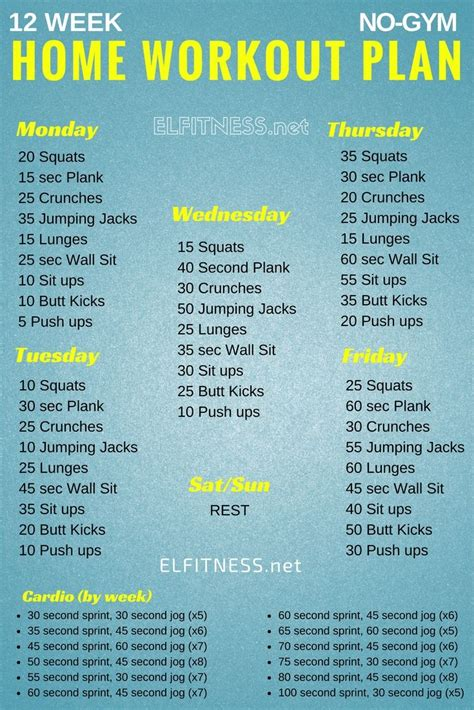 home gym workout plan best 25 12 week workout ideas on pinterest 12 week
