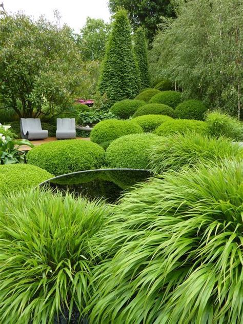 evergreen landscaping evergreen landscaping ideas eternal oases houz buzz