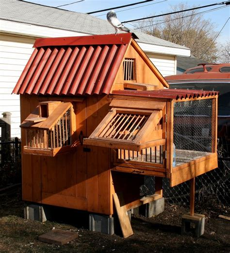 best 25 pigeon loft design ideas on pigeon