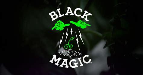 black magic black magic hydroponic gardening products indoor