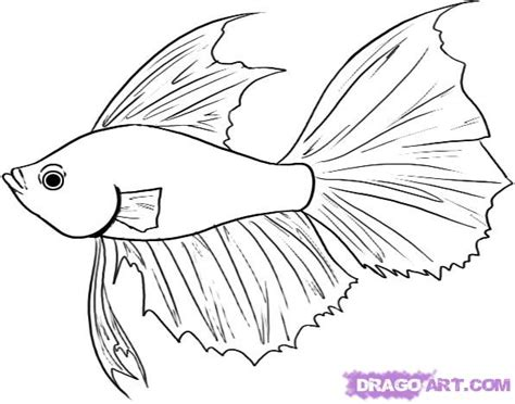 Draw The Fish Colouring Pages sketch template