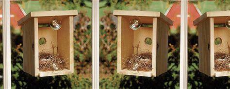 window view bird nest box  green head