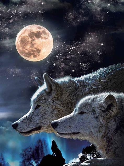 wolf and wolf moon picture nu venture llc