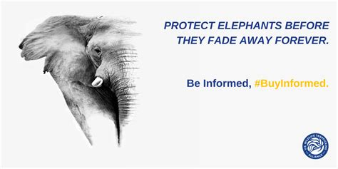 Ebay Of The Day Is That An Elephant In Your by Atta Members Support Ebay Auction For World Elephant Day