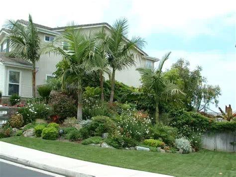 tropical gardening ideas tropical landscape design ideas florida landscaping