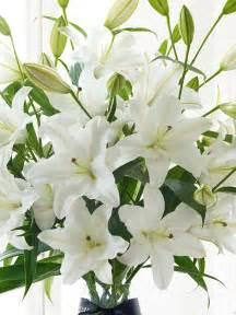 Green Crackle Glass Vase Luxury White Oriental Lily Vase