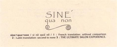 sine qua non lincoln park sine qua non salon celebrates 22 years in the hair industry
