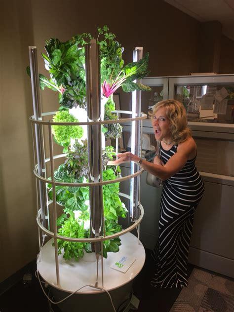 grow year   indoor growing hydroponic gardening