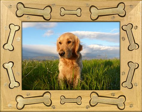 puppy picture frames bone picture frame feeds a shelter for 5 13 days a s