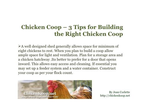 8 Tips On Caring For Chickens by 3 Tips For Building The Right Chicken Coop