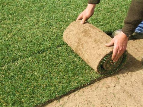 tappeto erba vera prato a rotoli pronto bsvillage