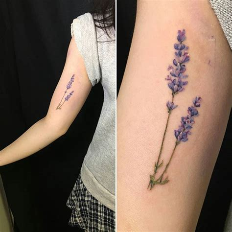 lavender tattoo meaning best 25 lavender ideas on