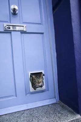 Exterior Door With Pet Door Installed 17 Best Ideas About Pet Door On Rooms Pet Products And Pet Rooms