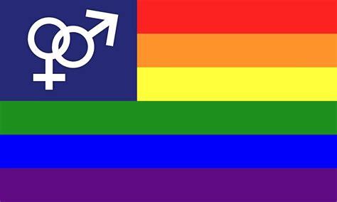 imagenes bandera de los pnp banderas de la diversidad sexual sexual diversity flags
