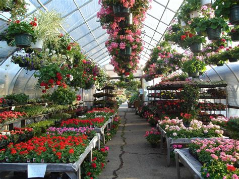 landscaping stores near me garden store near me garden idea garden supply store near me home garden store near me indoor