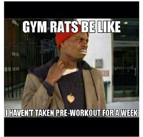 Gym Rats Meme - gym rat quotes quotesgram