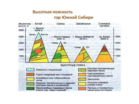 Различия урала и гор южной сибири таблица
