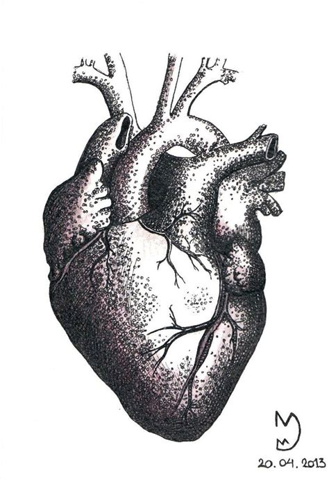 human heart tattoo 12 best hearts images on hearts black