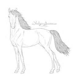 free horse lineart standing pose whiteligtning deviantart