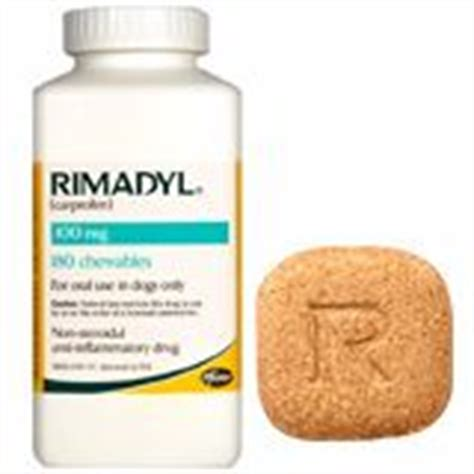 rimadyl 100mg for dogs rimadyl dosage for dogs related keywords rimadyl dosage for dogs keywords
