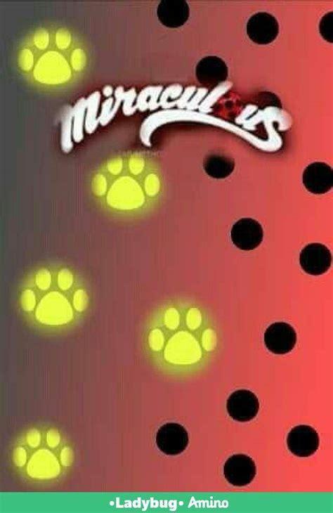 imagenes de lady bug para fondo de pantalla fondos de pantalla parte 1 miraculous ladybug espa 241 ol