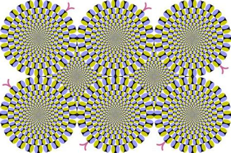 imagenes de ilusiones opticas geniales 15 ilusiones 243 pticas que har 225 n que no vuelvas a fiarte de