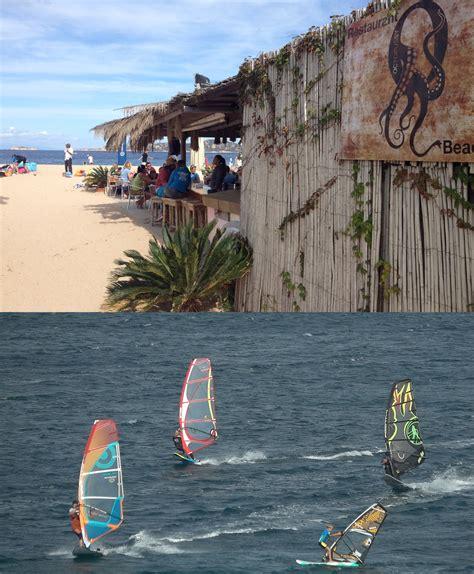 windfinder porto pollo windsurf spotguide porto pollo italien