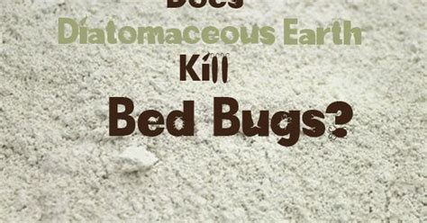 Does Diatomaceous Earth Detox Mercury by Does Diatomaceous Earth Kill Bed Bugs Home Uses For