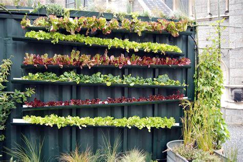 best vegetables for vertical gardening 20 vertical vegetable garden ideas home design garden